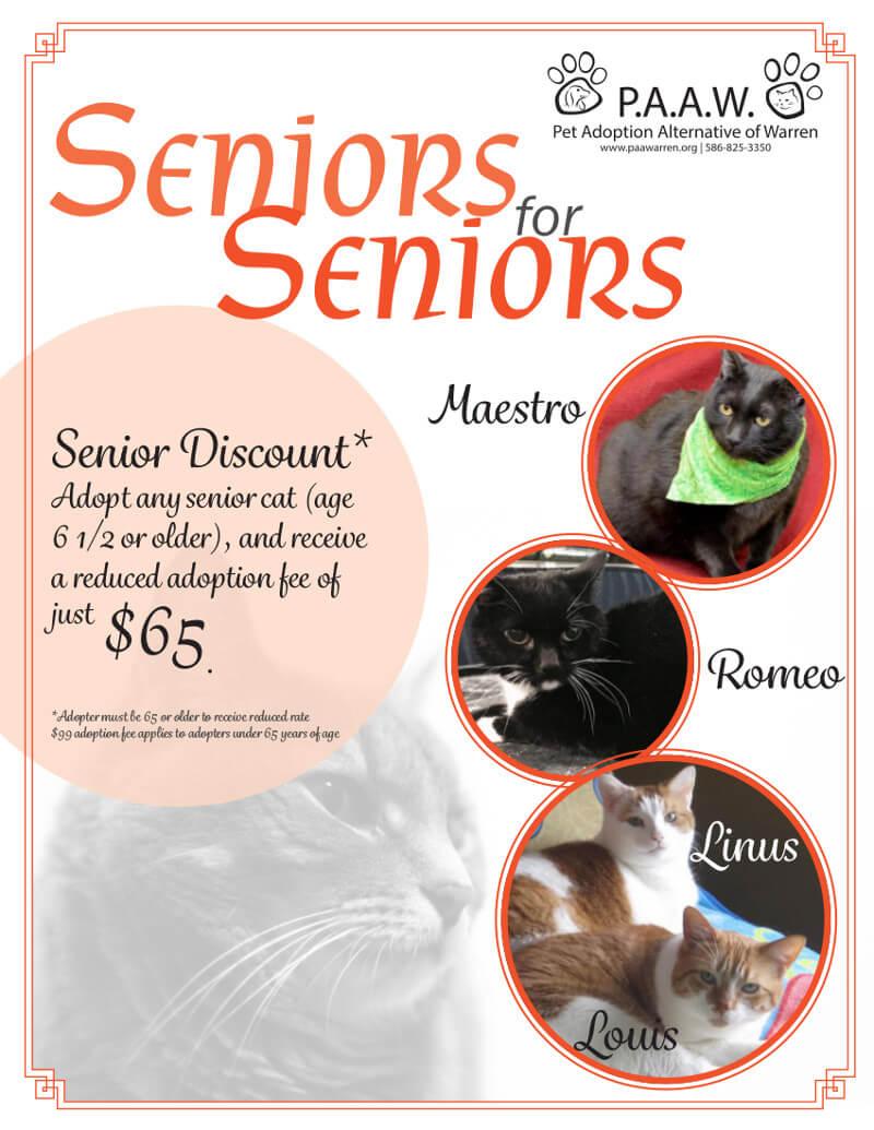 Seniors for Seniors